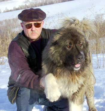 С батыром в 2007 м году в красноярске